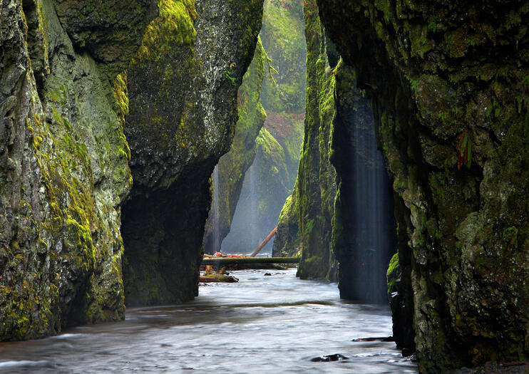 d395c8aa28c The Best Oneonta Gorge Tours & Tickets 2019 - Portland | Viator