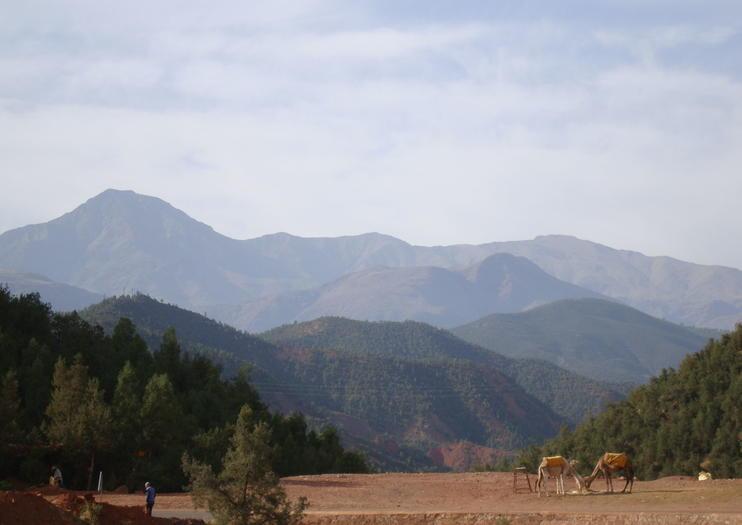 Kik Plateau