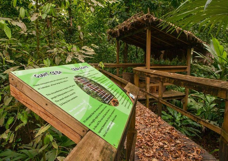 Cinco Ceibas Rainforest Reserve and Adventure Park