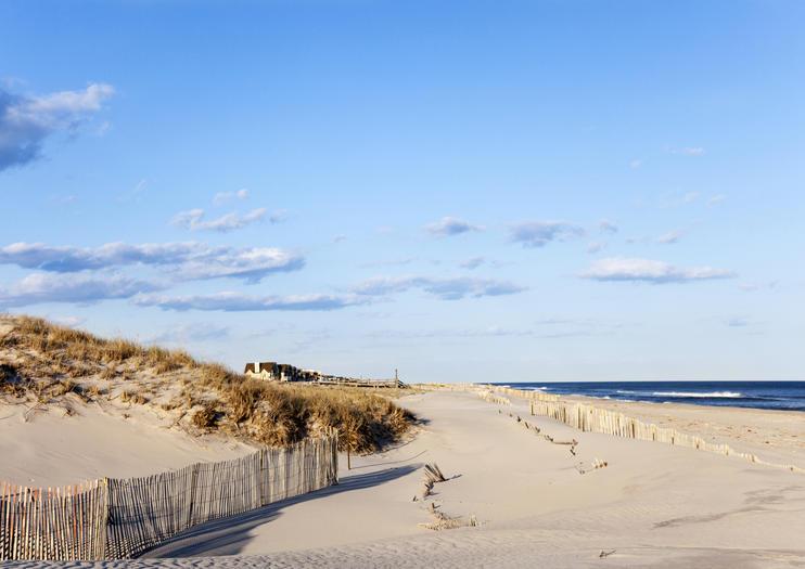 The Hamptons