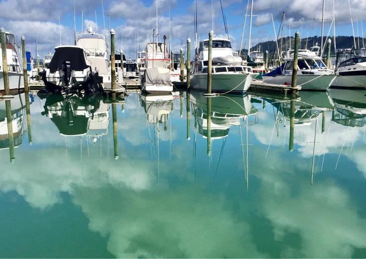 Whangaroa Harbour