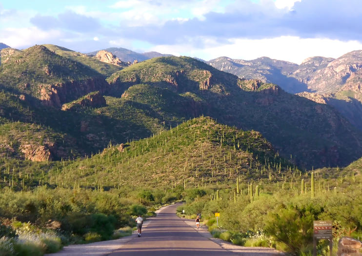 Sabino Canyon Recreation Area