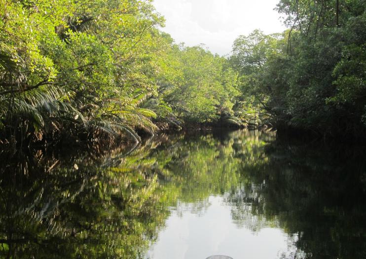 Cherating River (Sungai Cherating)