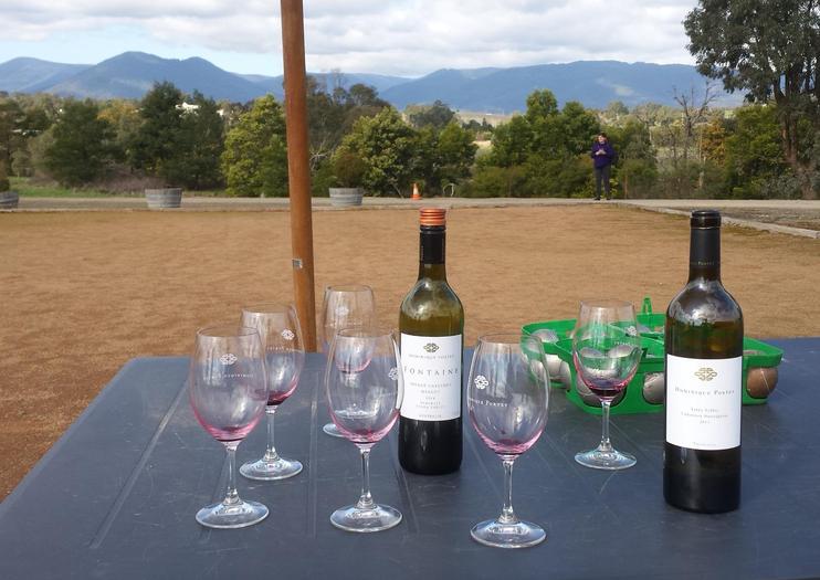 Propriété vinicole Dominique Portet