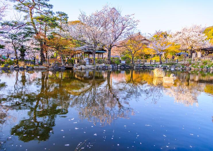 Maruyama Park (Maruyama Koen)