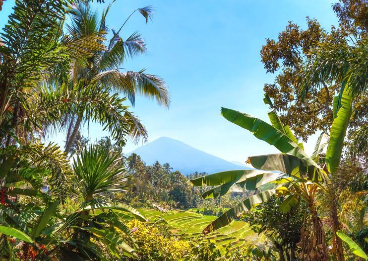 Mt. Batukaru (Gunung Batukaru)
