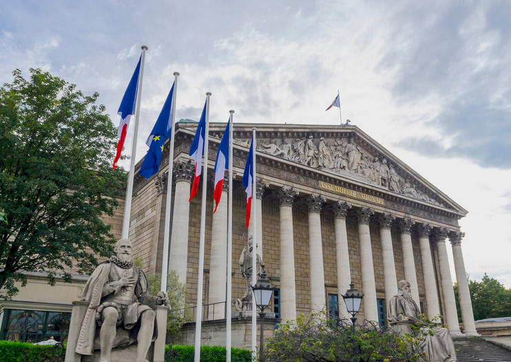 National Assembly (Assemblee Nationale)