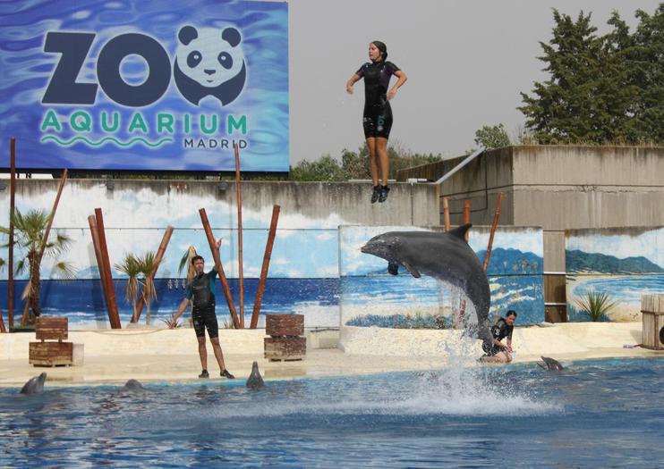 Resultado de imagen de zoo y aquarium de madrid