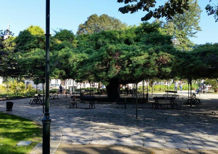 Principe Real Garten (Jardim do Principe Real)