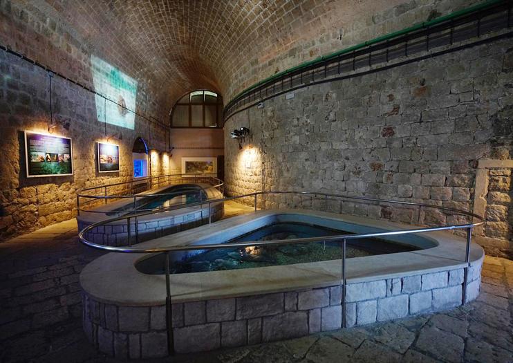 Image result for dubrovnik aquarium