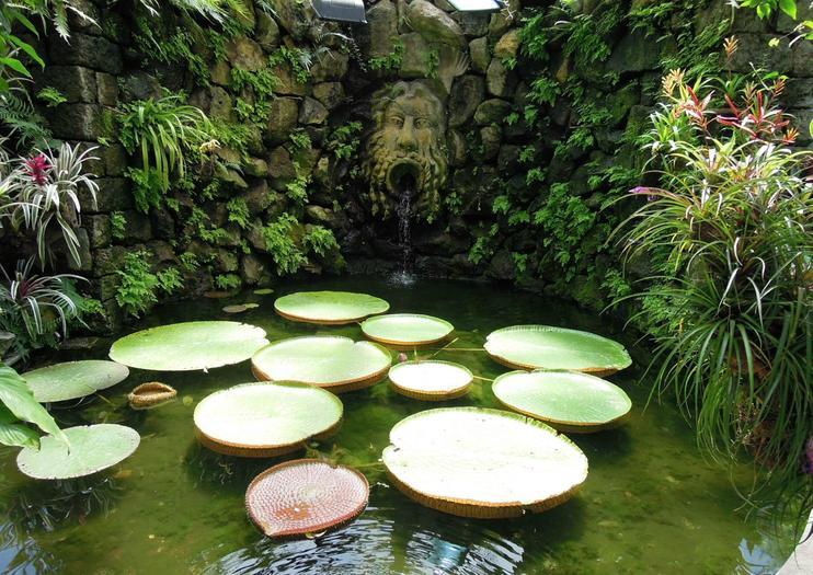 La Mortella Gardens (Giardini La Mortella)