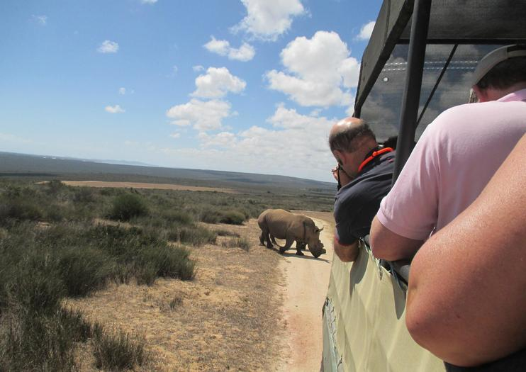 Buffelsfontein Game and Nature Reserve