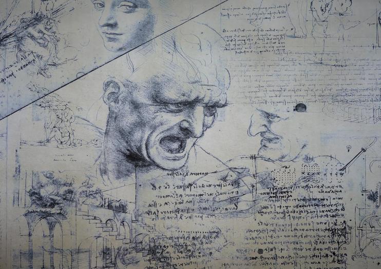 Leonardo da Vinci Museum (Museo Leonardiano di Vinci)