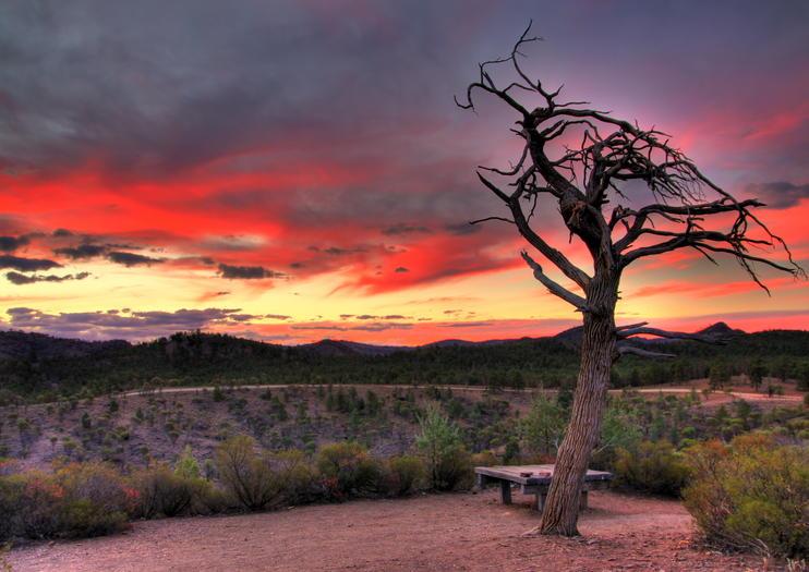 Ikara-Flinders Ranges National Park