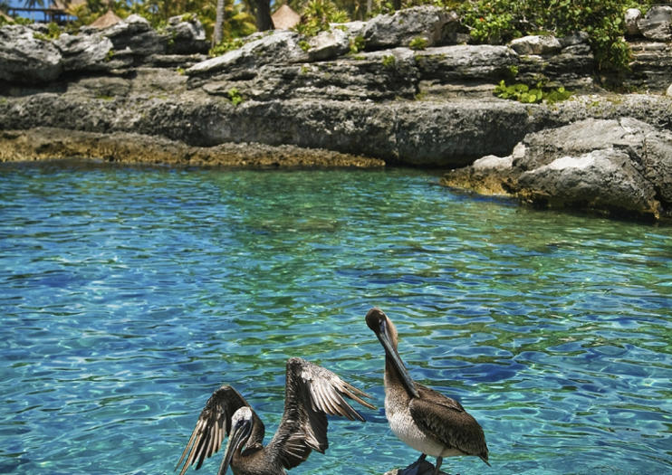 Riviera Maya Suggested Itineraries