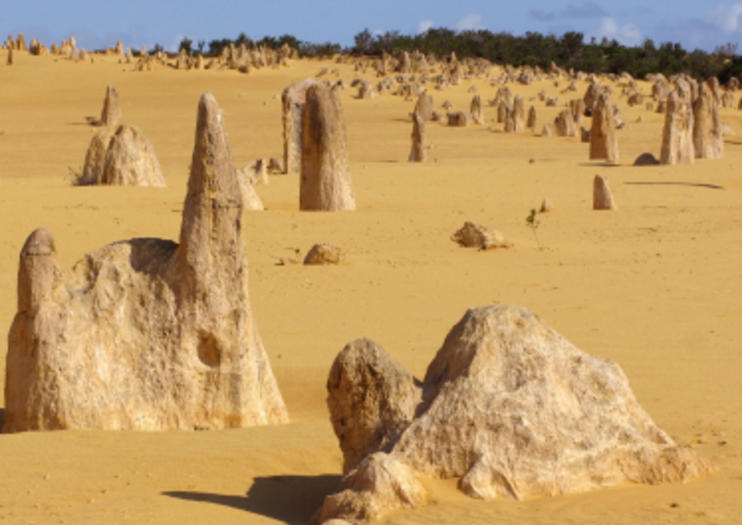 Best Pinnacles Desert Tours, Trips + Admission Tickets - Perth