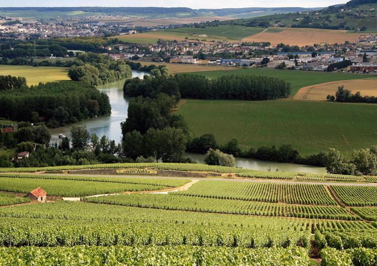 Suggestion de visites en Champagne