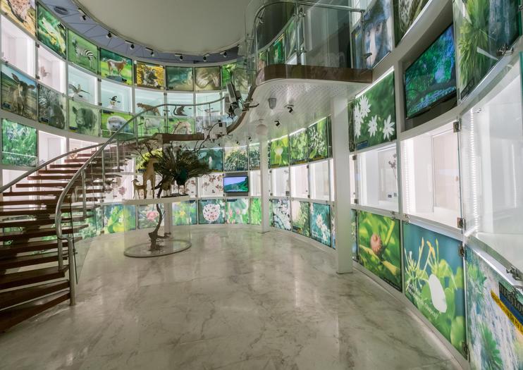 Quang Ninh Museum (Bao Tang Quang Ninh)