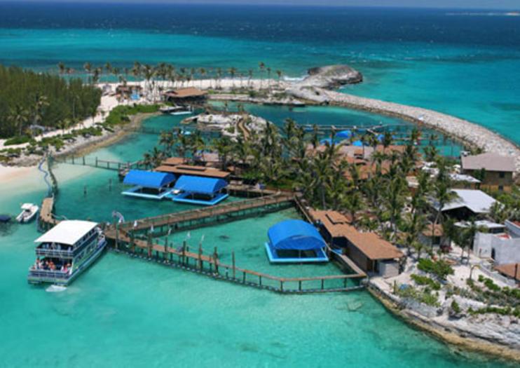 Isla Blue Lagoon Atracciones En Nassau Cosas Que Hacer En 2021 Viator