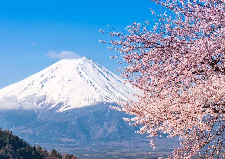 Know Before You Go: Visiting Mt Fuji