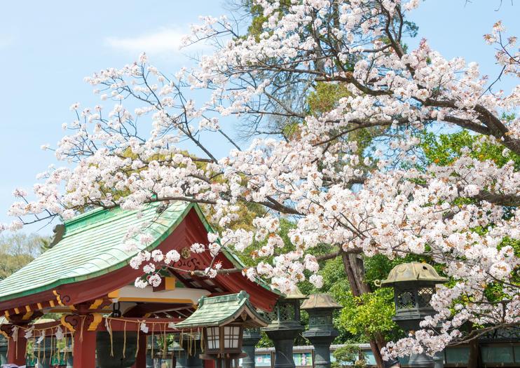 Ueno Park (Ueno Koen)