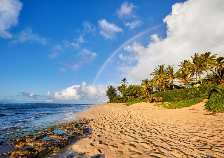Tagesausflüge nach Maui ab Oahu
