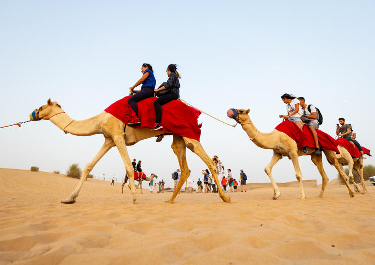Desert Experiences from Abu Dhabi