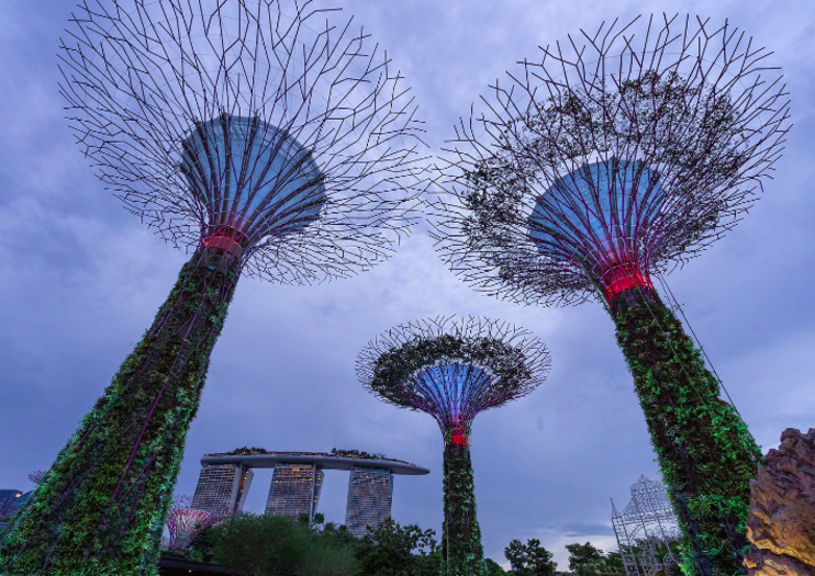 Things to Do in Singapore This Spring