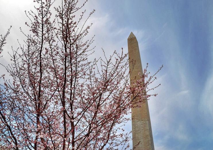 Things to Do with Kids in Washington DC
