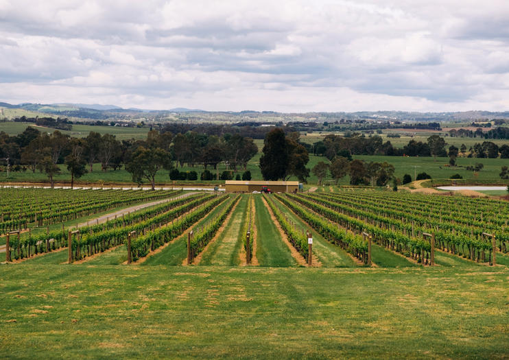 How to Spend 3 Days in the Yarra Valley