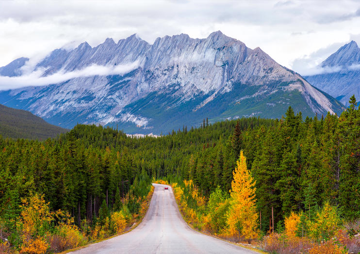 How to Spend 1 Day in Jasper