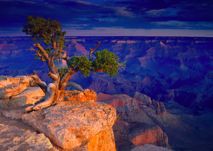 How to Spend 1 Day in Grand Canyon National Park