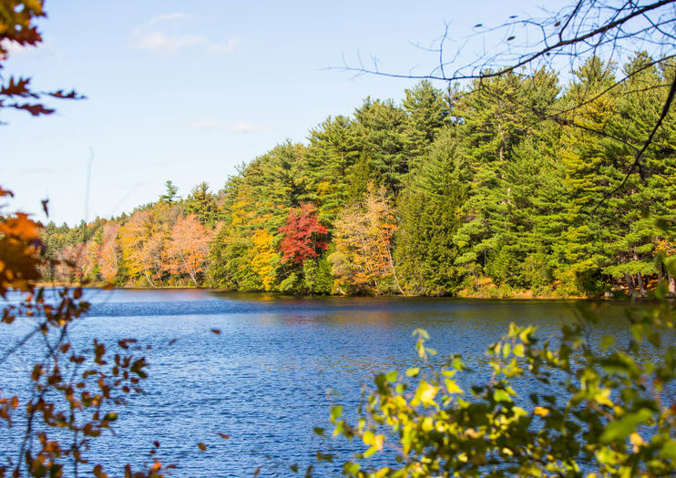 Top Day Trips from Boston