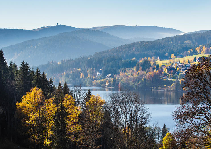 Black Forest Day Trips from Strasbourg