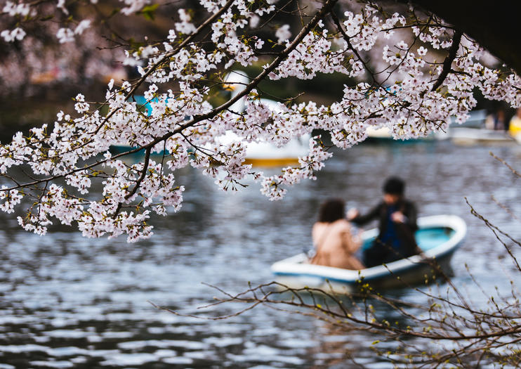 Romantic Things to Do in Tokyo
