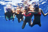 Snorkeling tour to Catalina islands
