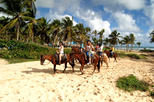 Punta Cana Horseback Riding Adventure...