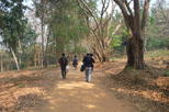 Private trekking and local temple day tour in chiang rai in mueang chiang rai 383532