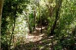 Samara Trails Including Werner Sauter Biological Reserve
