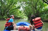 Wild Life Safari Float
