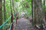 1-Day Combination Tour: Hanging Bridges, Waterfall