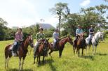 Horseback Riding at Arenal Wilberth Stable in front of Arenal Volcano National Park