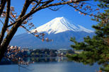 Mt fuji day trip including lake ashi sightseeing cruise from tokyo in tokyo 115676