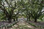Whitney Plantation Tour