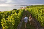Full day taste the wines of marlborough tour in blenheim 370170