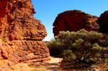 Kings canyon day trip from ayers rock in ayers rock 139976