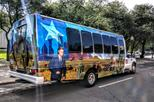 Dallas City Tour with JFK Viewing
