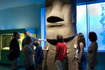 American Museum of Natural History VIP Tour