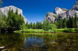Passeio ao Parque Nacional Yosemite e sequóias gigantes