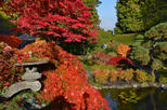 Butchart Gardens in the Fall, Shuttle with commentary from downtown Hotels
